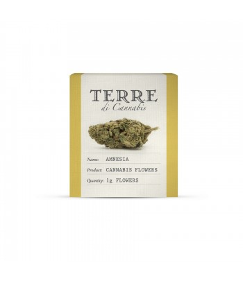 Terre Amnesia Hemp Flower